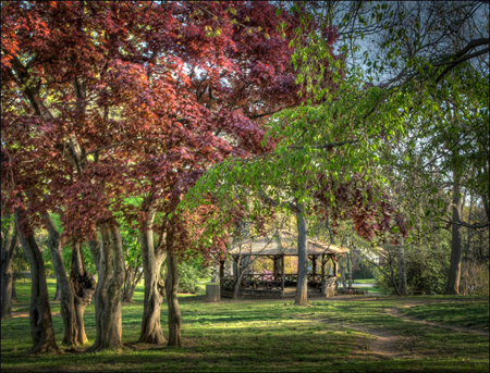 Swiss Cottage 2012